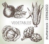 hand drawn sketch vegetable set....   Shutterstock .eps vector #235062022