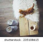 still life details  cup of... | Shutterstock . vector #235108615