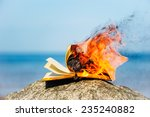 burning book on the sea coast | Shutterstock . vector #235240882