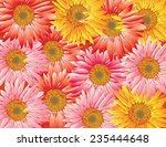 flowers drawing background cute ... | Shutterstock .eps vector #235444648