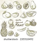 selection tropical fruit vector ... | Shutterstock .eps vector #235510492