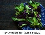 green and red basil on the blue ... | Shutterstock . vector #235554022