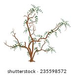 autumn dry leaves tree branches | Shutterstock .eps vector #235598572