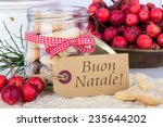italian christmas card with... | Shutterstock . vector #235644202