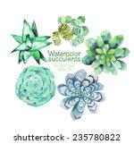 watercolor vector succulents... | Shutterstock .eps vector #235780822