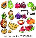 tropical fruit set vector...   Shutterstock .eps vector #235832806