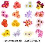 Stock photo flower bouquet seasonal various flowers isolated 235889875