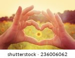 hands making heart symbol in a... | Shutterstock . vector #236006062