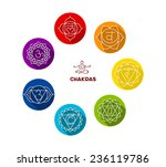 vector illustration of chakra... | Shutterstock .eps vector #236119786