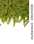 christmas green framework... | Shutterstock . vector #236151028