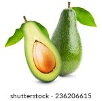 green avocados with leaves...   Shutterstock . vector #236206615