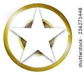 golden luxury elegance | Shutterstock . vector #236271448