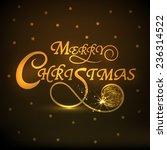 merry christmas celebrations... | Shutterstock .eps vector #236314522