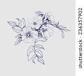 sketch  blooming branch of wild ...   Shutterstock .eps vector #236357902