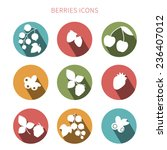 set of simple plane berries... | Shutterstock .eps vector #236407012