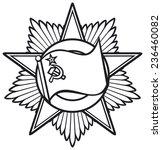 soviet star order    Shutterstock .eps vector #236460082