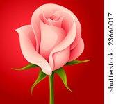 vector  pink rose | Shutterstock .eps vector #23660017