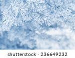 Winter Background With Snowy...