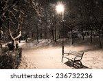 Bench Lamp In Light  Winter...