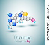 thiamine or thiamin or vitamin... | Shutterstock .eps vector #236843272