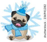 pug dog in hat on the... | Shutterstock .eps vector #236941282