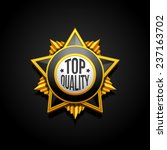 medal military quality star...   Shutterstock .eps vector #237163702