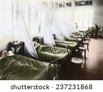 An influenza ward at the U S Army Camp Hospital in Aix-les-Bains France during the Spanish Flu epidemic of 1918-19, 1918 photograph with digital color.
