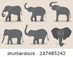 gray elephant set | Shutterstock .eps vector #237485242