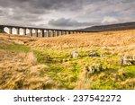 Ribblehead Railway Bridge   Th...