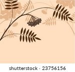 branch of a plant  mountain ash ... | Shutterstock .eps vector #23756156