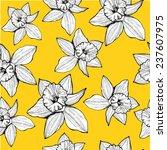 hand drawn daffodil seamless... | Shutterstock .eps vector #237607975