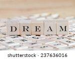 dream word on wood blocks | Shutterstock . vector #237636016