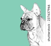 french bulldog portrait  hand... | Shutterstock .eps vector #237637966
