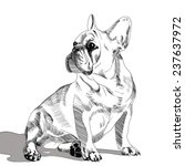 french bulldog portrait  hand... | Shutterstock .eps vector #237637972