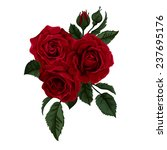 bouquet of  roses  isolated on... | Shutterstock .eps vector #237695176