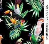 tropical animals birds parrot...   Shutterstock .eps vector #237737122
