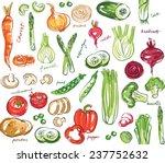 assorted vegetables seamless... | Shutterstock .eps vector #237752632