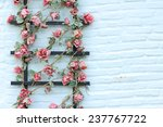 Flower On Wall Brick