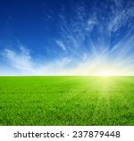 green field  blue sky and sun  | Shutterstock . vector #237879448