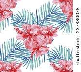 beautiful seamless floral...   Shutterstock .eps vector #237880078