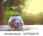 sprout growing on glass piggy... | Shutterstock . vector #237930475