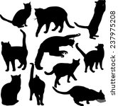 Stock vector cats silhouette collection vector 237975208