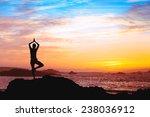 beautiful silhouette of woman... | Shutterstock . vector #238036912