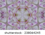 white and purple floral mandala | Shutterstock . vector #238064245