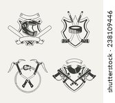 set of extreme sports emblems ... | Shutterstock .eps vector #238109446