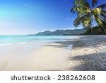 tropical beach background | Shutterstock . vector #238262608