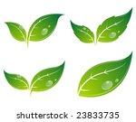 set of leaves | Shutterstock .eps vector #23833735