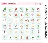 salad recipe ingredients vector ... | Shutterstock .eps vector #238351915