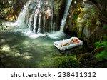 sleeping woman in deep forest... | Shutterstock . vector #238411312