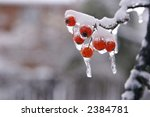 the results of the snow and ice ... | Shutterstock . vector #2384781